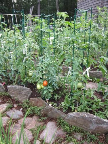 another-of-garden